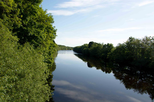 Flat calm tree lined river looking eastwards
