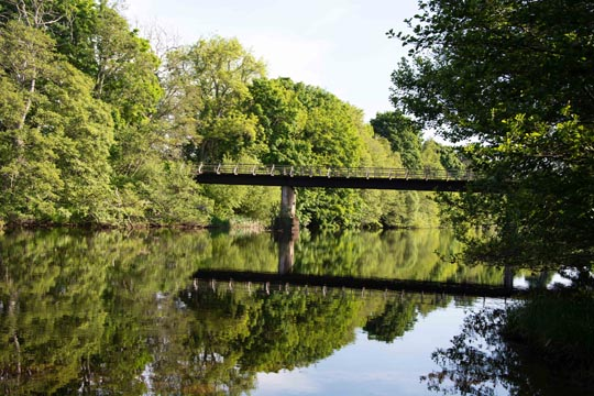 Calm tree surrounded river, with a view of a bridge