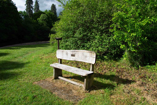 Wooden seat with plaque dedicated to Dr Robin John Hope