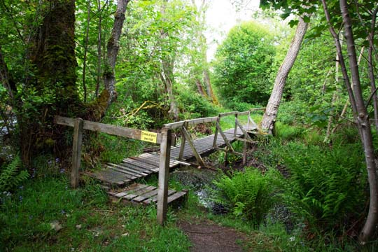 wooden foot bridge with the sign Cross At Your Own Risk