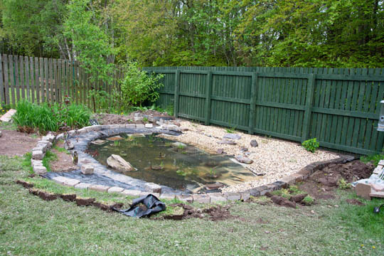 gravel now laid between pond and back fence