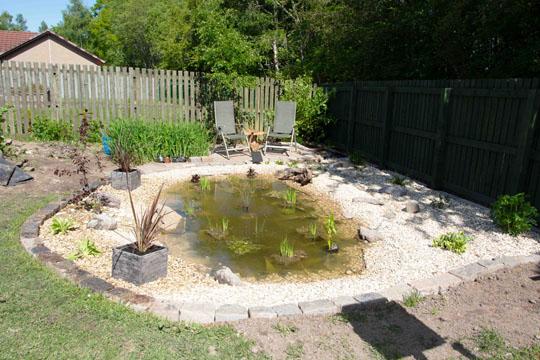 pond area complete