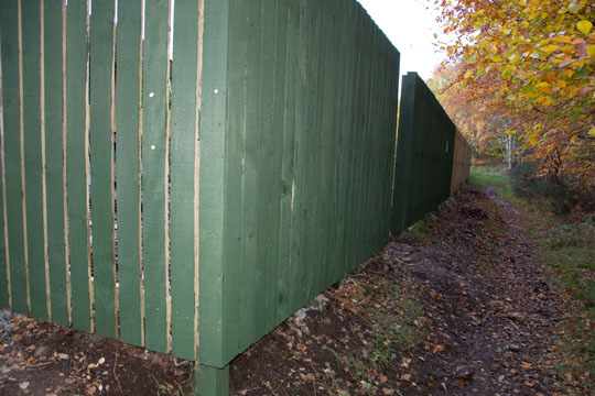 Back fence only partially painted