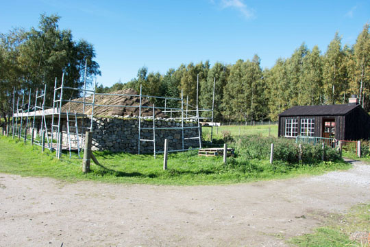 a blackhouse surrounded by scaffolding with a wooden loomshed behind