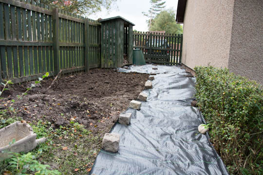 hedge on right, ground cover membrane on right and then freshly dug ground on left