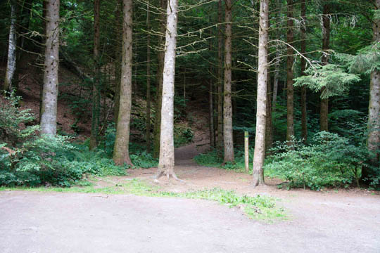Entrance to the community woodland