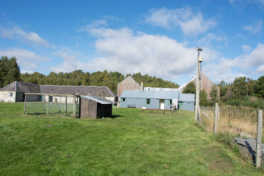 The farm buildings and a tin cottage