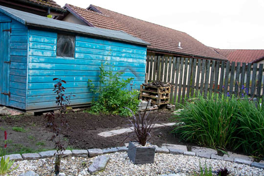 looking across pond to shed and bug hotel