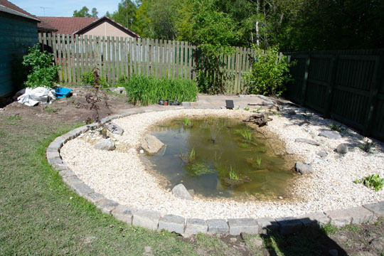 Pond and patio complete