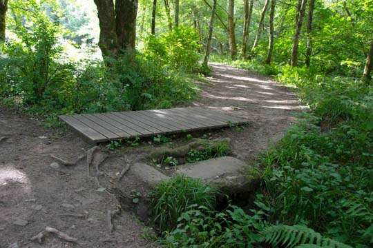 a wooden bridge with a rock to the side