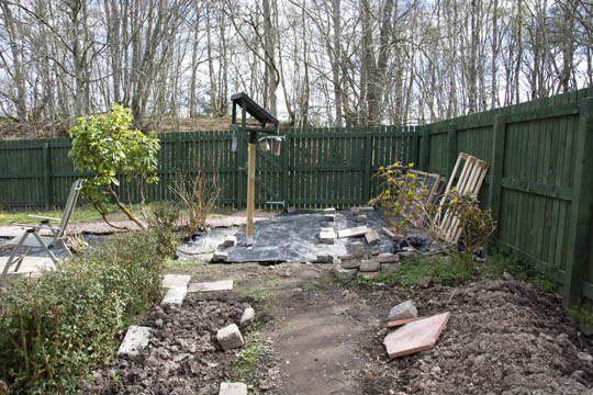 Hedge at the left, bare ground and setts, ground cover under bird table