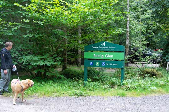 Willow and Ian looking at the Reelig Glen sign
