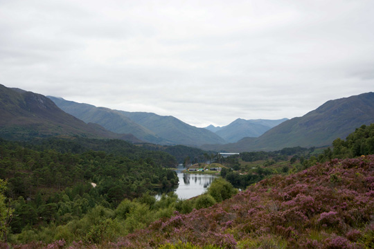 Looking west from Loch Affric - at the right about the middle of the picture is Willows head