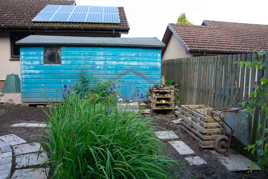 flag iris leaves, blue shed in background and path, bug hotel and compost bin in place