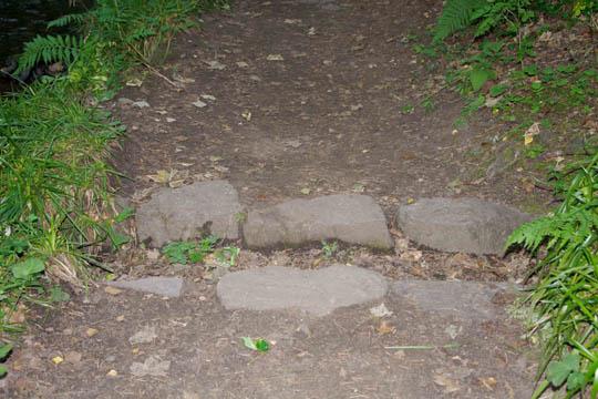 Path drainage