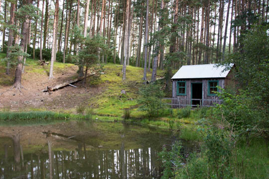 Hut at the edge of the pond
